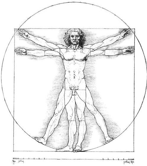 telo-cheloveka