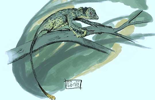 Scansoriopteryx. Реконструкция: Matt Martyniuk
