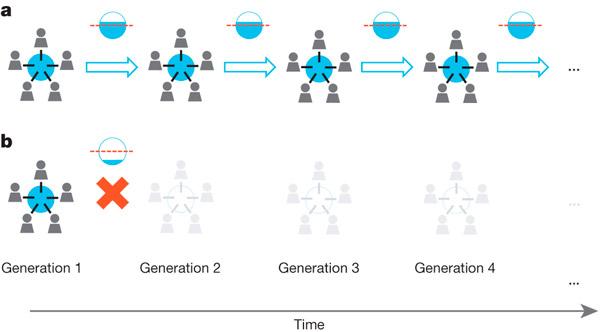 На рисунке схематично показаны правила игры. Пять игроков выбирают ресурс: если они выбрали в сумме меньше 50% (a), то наступает черед следующего поколения игроков распоряжаться ресурсом. Если же поколение выбрало больше 50% этого ресурса (b), то игра останавливается. Рисунок из обсуждаемой статьи в Nature
