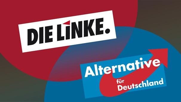 """Электорат """"прогрессивных"""" Die Linke и реакционных Alternative für Deutschland имеет больше общего, чем левые хотели бы публично признать"""